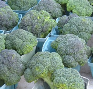Use fresh, local broccoli for your soup